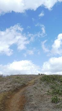 奥獅子吼山頂上はまったく木がない丘で登頂感抜群