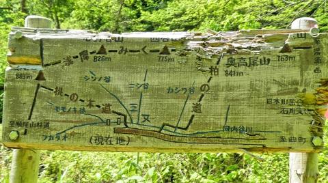 林道 河内谷線に出る。木彫りの案内図。風合いがある