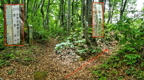 少年の森分岐。高尾山登山口方向は右の砕石所登山口