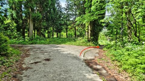 ゲートを抜けて右で林道白見谷線へ