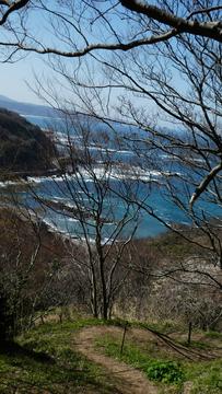 向かいの岬の防波堤が見えてきた