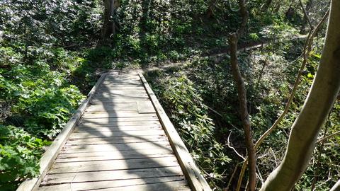 谷間が連続するが木道が設置されており楽に通行できる