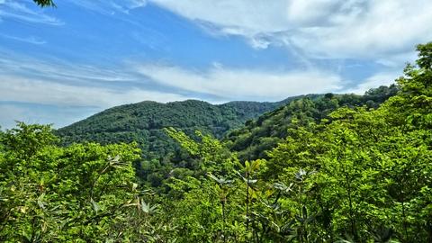 反対側にさっき登った白兀山と林道が