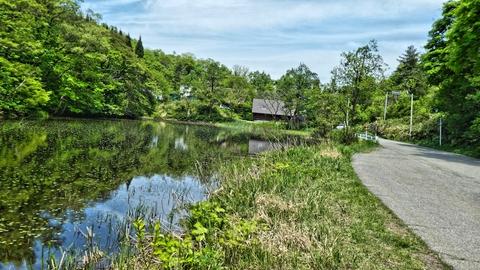見上峠池にまでたどり着いたら駐車場はすぐそこ