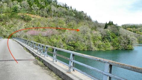 戻って橋を渡る。道幅狭いが交通はほとんど無い