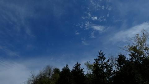ピークより。空が広い