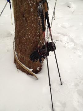 雪山でも地面にグローブをつけないですむ