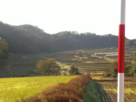 県道210号線沿いの棚田風景