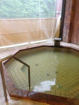 景色が良い露天風呂。夏場は虫除けネット