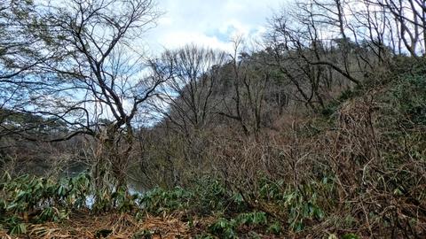 左手の膨らみが倉ヶ岳