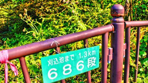 石段コースは686段の階段