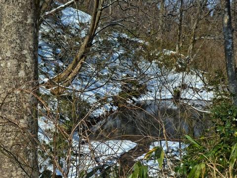 鉄塔巡視路の最終地点の池 平沢川へ続くの沢の水源