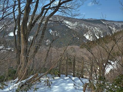 立派な柵の向こう側は林道国見線