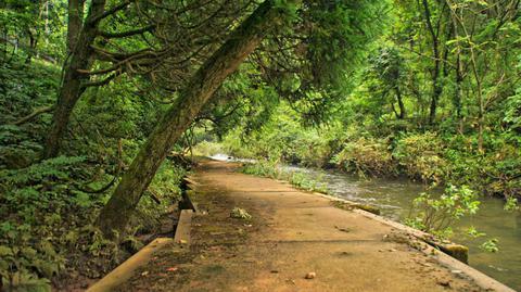 二の滝への遊歩道