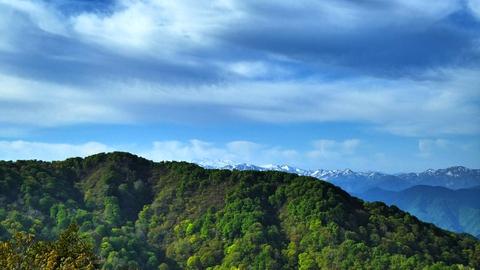 向かい側に見えるのが奥医王山。奥は大門山の頭が更に右奥に白山