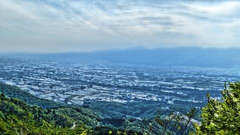 見返り杉はコース中、砺波平野が一番きれいに見えるポイント