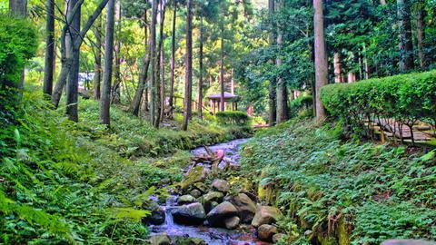 渓流を囲むように公園が整備されている