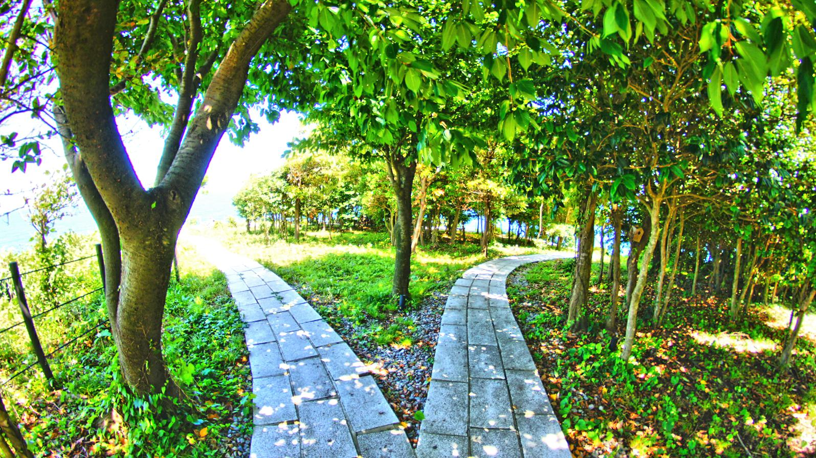ランプの宿の聖域の岬と青の洞窟パワースポットと駐車場アクセス(石川県珠洲市)
