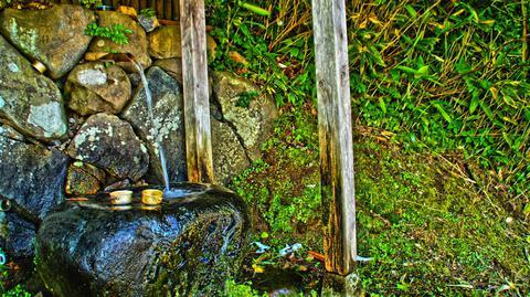 冷たい鰯が池の霊水