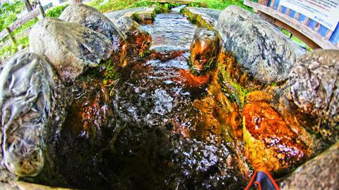 こんこんと湧き出る伏流水