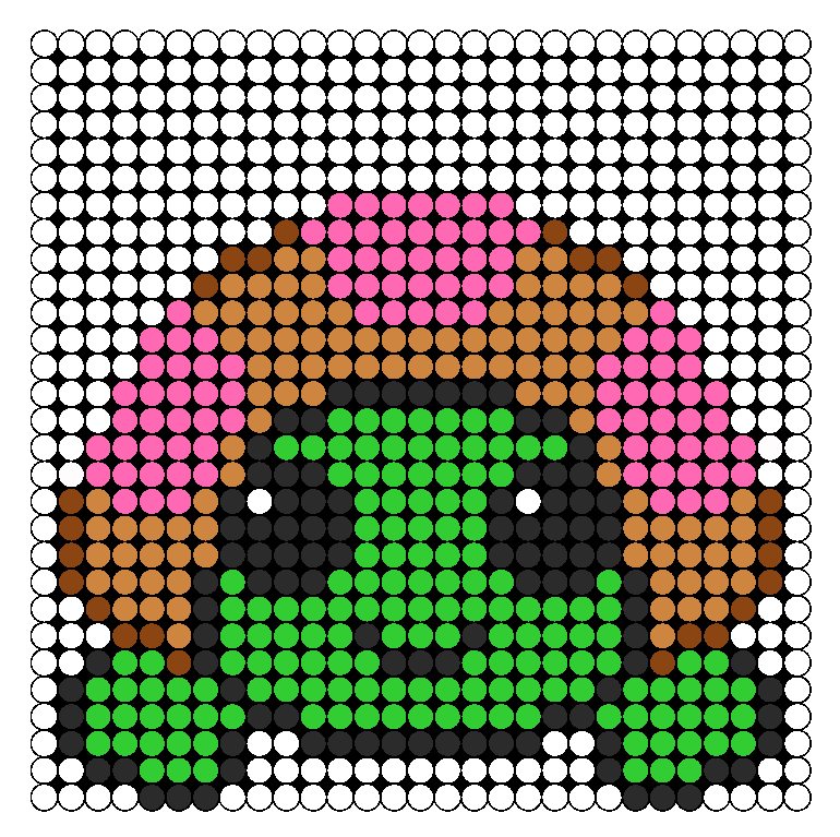 Pinki Turtle