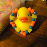 Why Yes, This Is A Duck.
