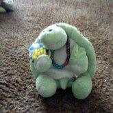 Turtle With Kandi