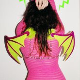 My Dragon Wings