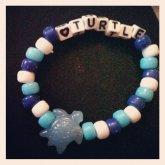 Turtle Single :D