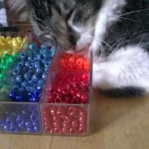 My Cat Hatsu-haru Soma Laying On My Beads ^_^;