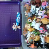 Littlest Pet Shop Toys!