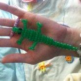 Kandi Aligator