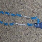 Hyacinth Macaw Necklace