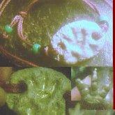 A T-rex Kandi Fossil Bracelet