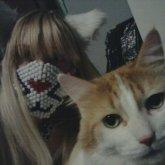 Kitty Twins :D