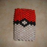 Back Of Pokemon Case