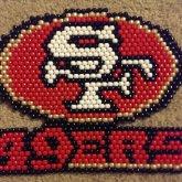 49ers Panel