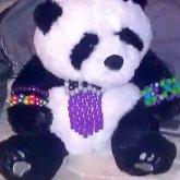 Kandi Panda