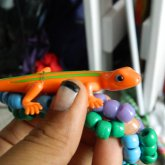 Orange Lizard On A Bracelet.