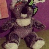 My Koala Has A Diaper
