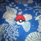My First Poke Ball