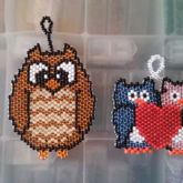 Owl and Love Owls
