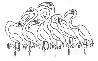 2twisted-flamingos