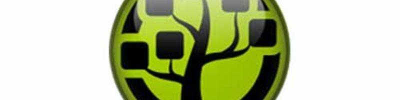 Windirstat logo icon