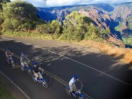Product Waimea Canyon Downhill Bike Tour