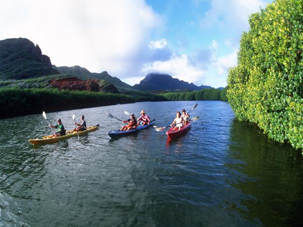 Product Kayak The Wailua River & Hike To A Waterfall