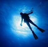 Product Certified Shore Dives