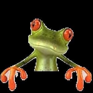 @thefrog