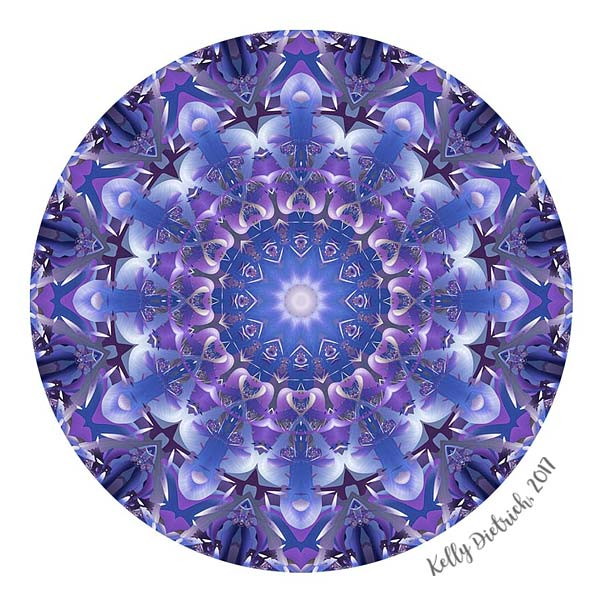 Deep Blue and Purple Mandala