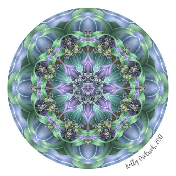 Ribbon Mandala in Purple and Blue